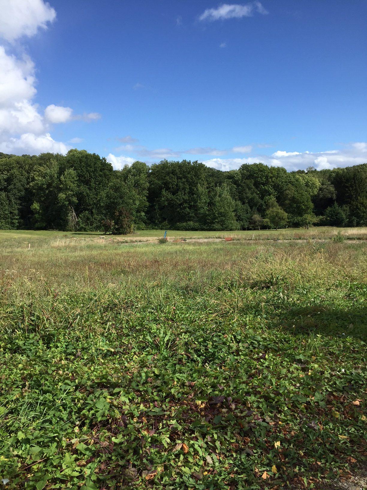 Ref. 1251-Très beau terrain 10.33 ares- Haut-Soultzbach